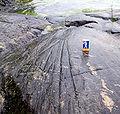 Israfflor pa berghall.jpg
