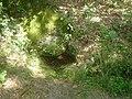 Izvorul de la poalele Pietrei Cozia - panoramio.jpg