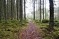 Jääskelä nature trail 2019.jpg