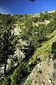 J26 657 Aufstieg zum Skála.jpg