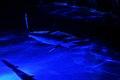 JAWS - panoramio.jpg