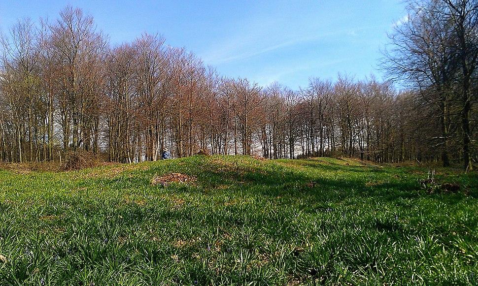 Jacket's Field Long Barrow I