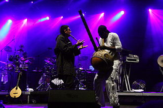 James McNally (musician) - James McNally (l) and N'Faly Kouyate with Afro Celt Sound System at TFF Rudolstadt, 2010