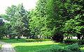 Janów - park.jpg