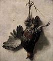 Jan Baptist Weenix - Dode patrijs.jpg