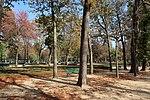 Jardin du Ranelagh, Paris 16e, automne 4.jpg