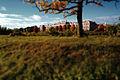 Jelgavas Pils rudenī.jpg