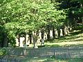 Jewish cemetery Adelebsen.jpg