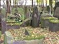 Jewish cemetery in Kraków (Kazimierz)18.jpg