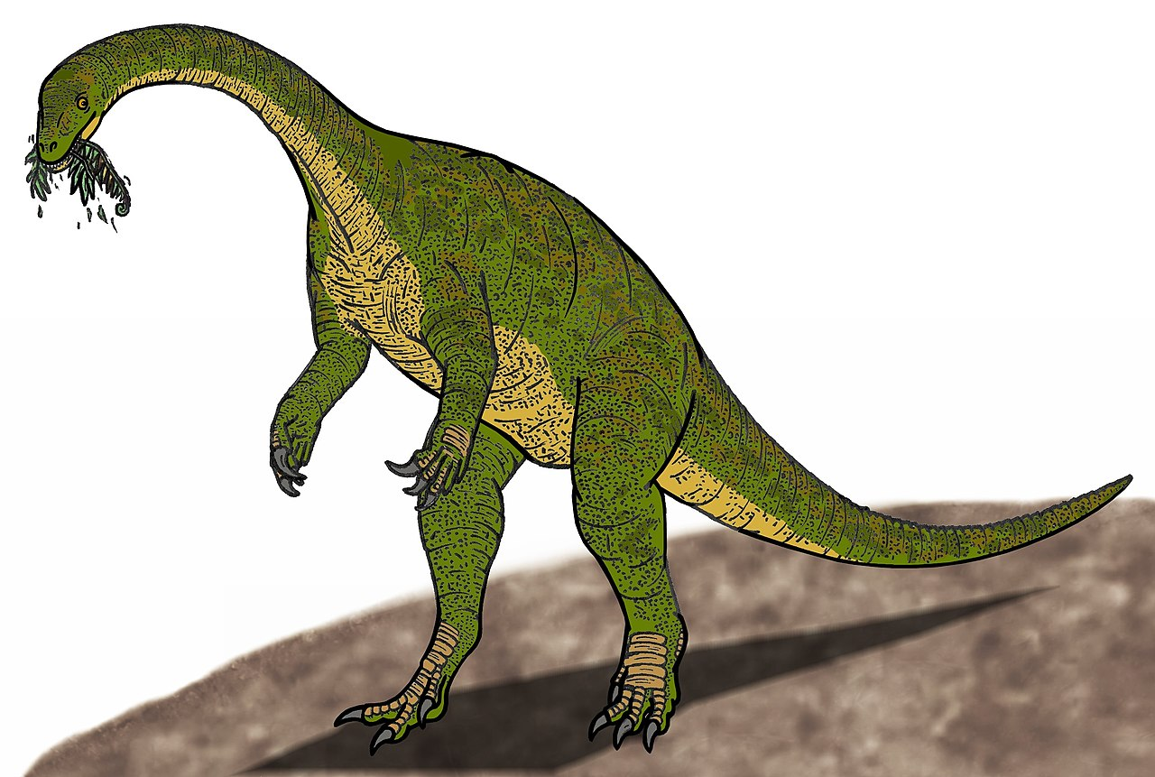 lhv imagesi File:Jingshanosaurus LHV 500.JPG