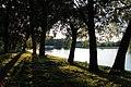 John's Ponds in Łódź 6.jpg