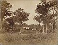 John Davis Stevensons Anwesen.jpg