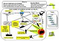 Joint Network Enabled Weapon (NEW) Capability Operational Concept Graphic (OV-1).jpg