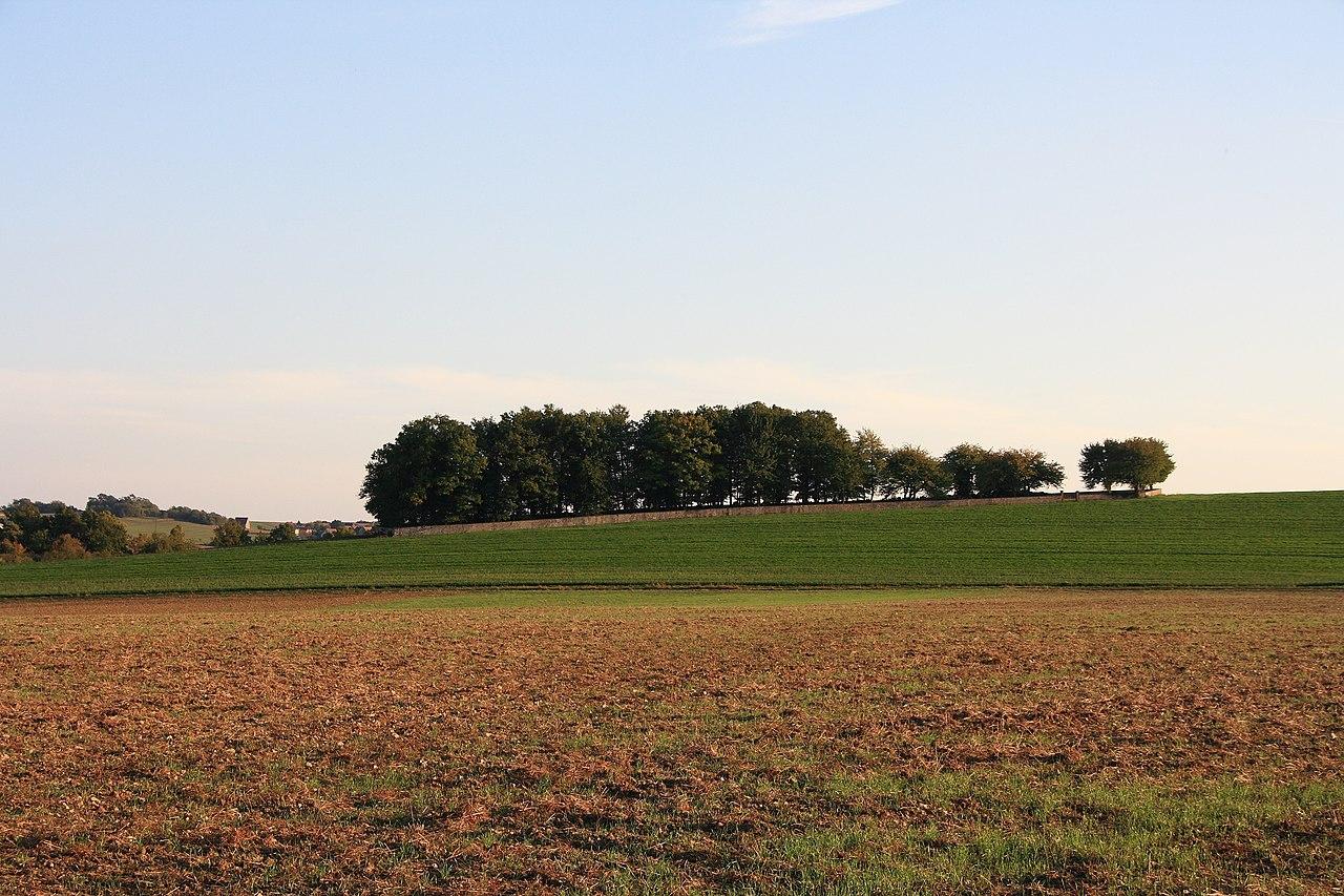 Judenfriedhof Weikersheim 01.jpg
