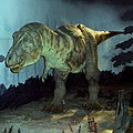 Jurassic Park Trex.jpg