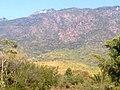 KURUMBAPATTI ZOOLOGICAL PARK, SALEM - panoramio (3).jpg