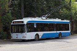 Kaluga 2013 trolleybus 01.jpg