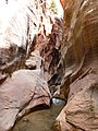 Kanarra Canyon, DyeClan.com - panoramio (13).jpg