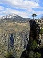Kaplanlı civarı - panoramio.jpg