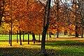 Klagenfurt Viktring Stiftspark 11112009 88.jpg