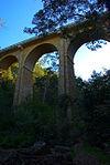 Knapsack Viaduct.jpg