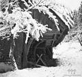Kozolec pozimi, Dolenjska 1965 (2).jpg