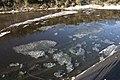 Kuji River 39.jpg