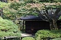 Kyoto Imperial Palace (52406804).jpeg
