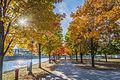L'automne au Vieux-Port de Montréal (15460188241).jpg
