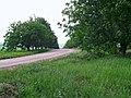 L327, Moldova - panoramio (8).jpg
