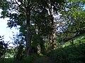 La Gandihon , au cœur du parc des volcans d'Auvergne, dans le département du Cantal. - panoramio (4).jpg