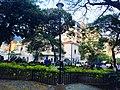 La grama de la Plaza Las Delicias.jpg