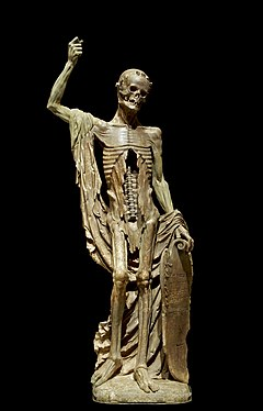 An alabaster statue showing Death as a living skeleton. His right arm is draped with a shroud and raised upwards. His skull appears to be looking downwards. His shield is inscribed with a verse in French.