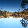 Laguinho espelhado - panoramio.jpg