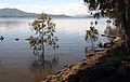 Lake Hume at 100 per cent in November 2010 (2).jpg