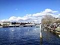 Lake Zurich, Zurich (Ank Kumar) 07.jpg