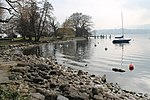 Lake Zurich - panoramio (39).jpg