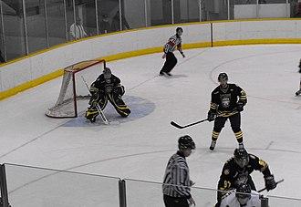 Lakehead Thunderwolves - Men's 2012 Playoff Game vs. Windsor Lancers.
