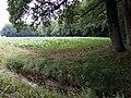 Landschaftsschutzgebiet Waldgebiete bei Dielingdorf und Handarpe LSG OS 00025 Datei 27.jpg