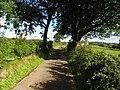 Lane, Bratwell - geograph.org.uk - 2022693.jpg