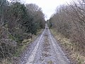 Lane at Gortnaderrary - geograph.org.uk - 1179547.jpg