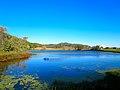 Lantz Pond - panoramio (1).jpg