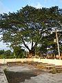 Laoac,Pangasinanjf8644 18.JPG