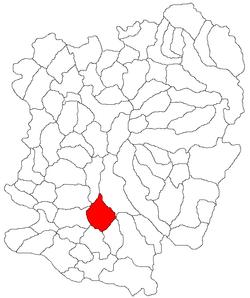 Vị trí của Lapusnicu Mare