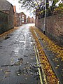 Leaf Fall in Marsh Lane, All Saints' Day 2009 - geograph.org.uk - 1564774.jpg