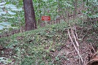 Leesylvania (plantation) - Close-up of exposed Leesylvania foundation