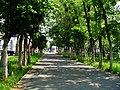 Leninskiy rayon, Chelyabinsk, Chelyabinskaya oblast', Russia - panoramio (6).jpg