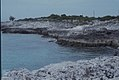 Limestone coast. North West of lighthouse. Inagua. (24005347287).jpg