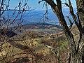 Lisina, Serbia - panoramio (4).jpg
