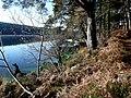 Loch Migdale. - geograph.org.uk - 1572836.jpg